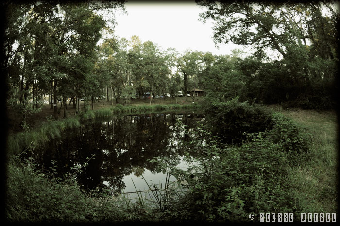 L\'étang du camping
